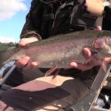 Fly Fishing for Trout on Blagdon with Snowbee